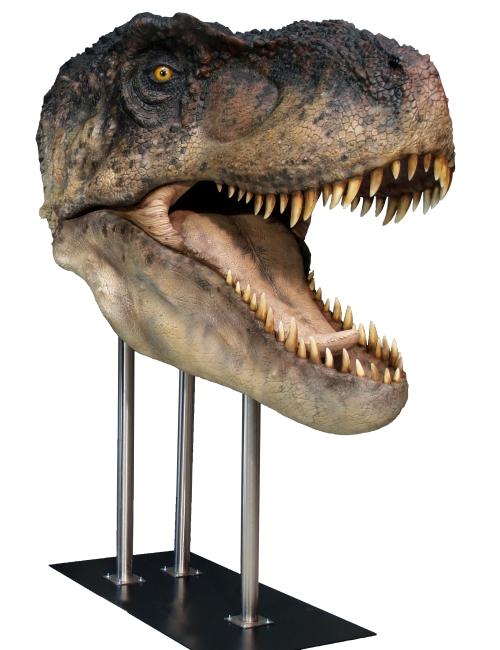 T-Rex Life Size - Taille réelle