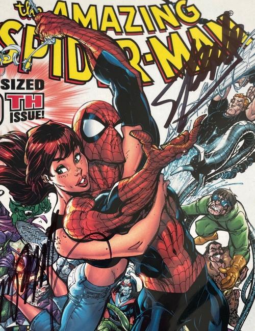 The Amazing Spiderman 500